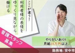 【安中市】住宅型有料老人ホーム/デイ/ヘルパーステーションの看護スタッフ【JOB ID:366-1-ns-f-jn-bbb】 イメージ